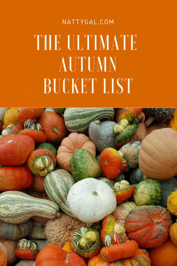 Autumn Bucket List | Fall Bucket List | Fun Fall Activities