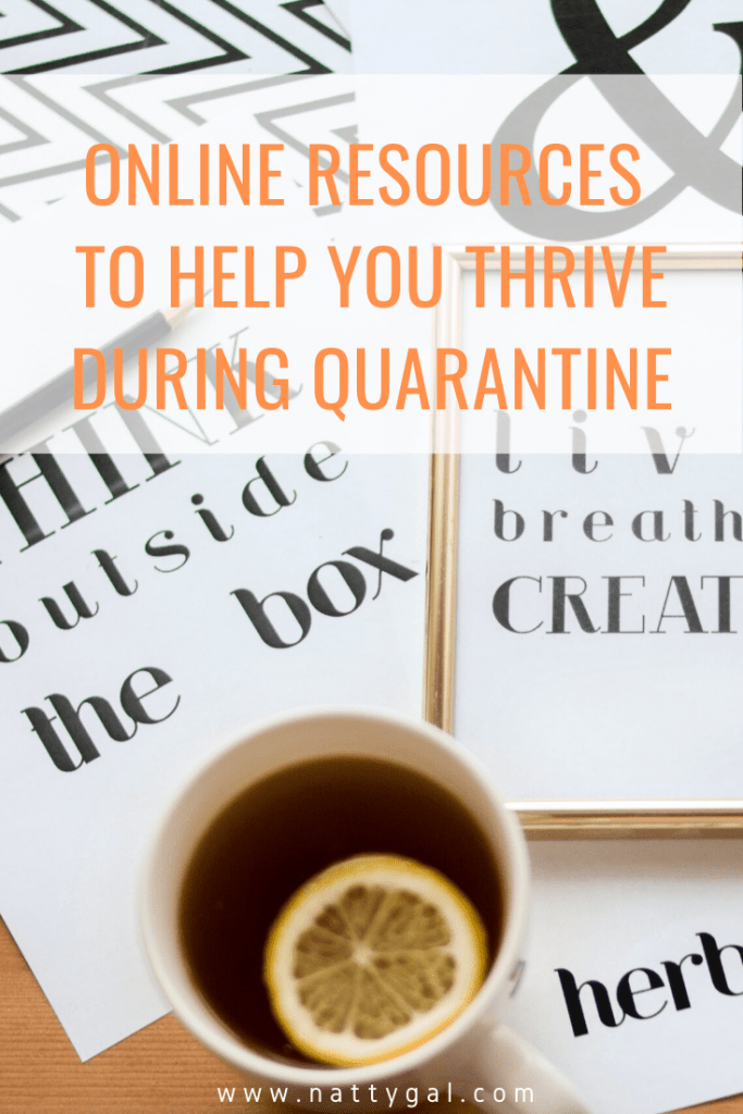 Most of the country is under a stay-at-home order and will be for the next few weeks.  Are you trying to survive?  Or would you rather plan to THRIVE?  | Thrive During Quarantine